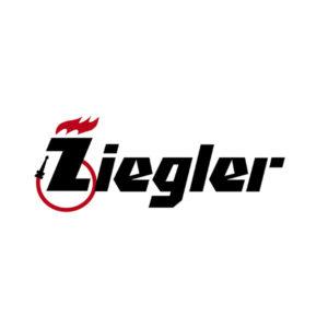 З/части Zieglera (Зиглер)